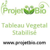 tableaux végétal stabilsés pas cher